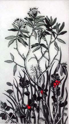 The Living Earth Bearberry & Labrador Tea - Gallery Indigena