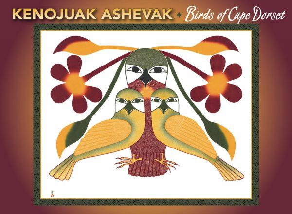 inuit art cape dorset kenojuak notecards