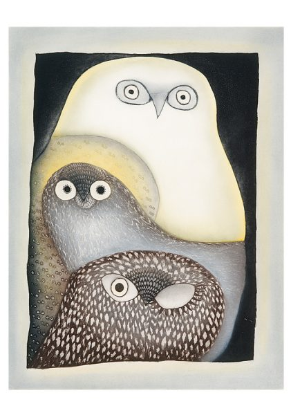 owls-inuit-art-from-cape-dorset-boxed-notecards-127