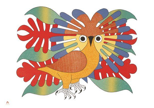 sun-owl-and-foliage-kenojuak-ashevak-small-boxed-cards-61
