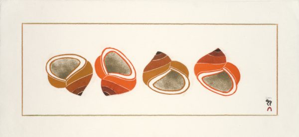 12-26Siupiru-Shells