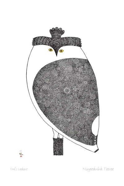 OwlsLookoutNT