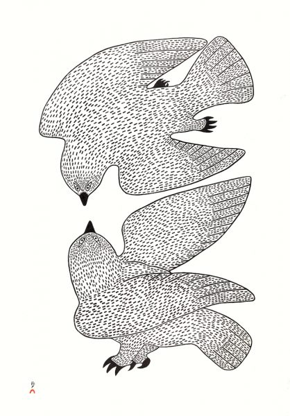 05-Sparring Owls