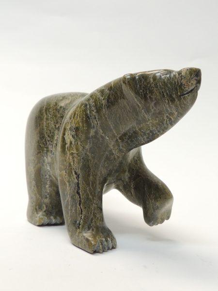 Bear Noah Ragee